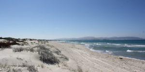 Słoneczny klimat Tunezji